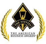 Stevie Awards: Information Technology Team of the Year- Bronze